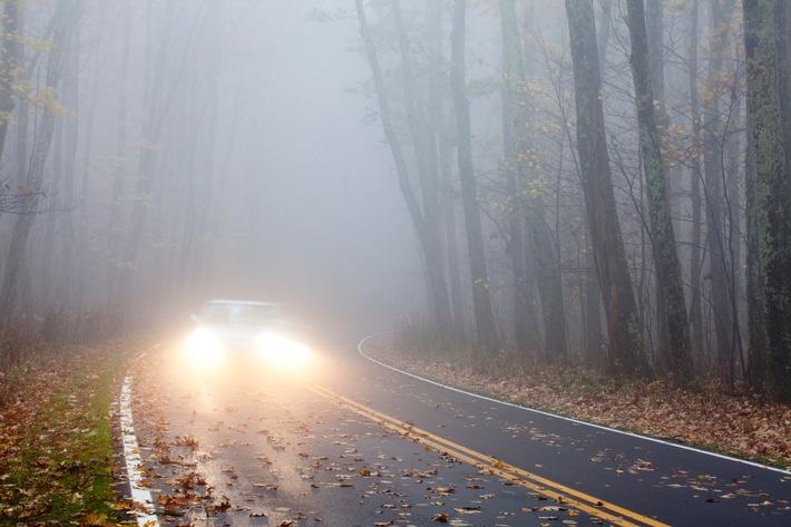 Augen auf im Herbst: Sicher unterwegs mit dem Auto